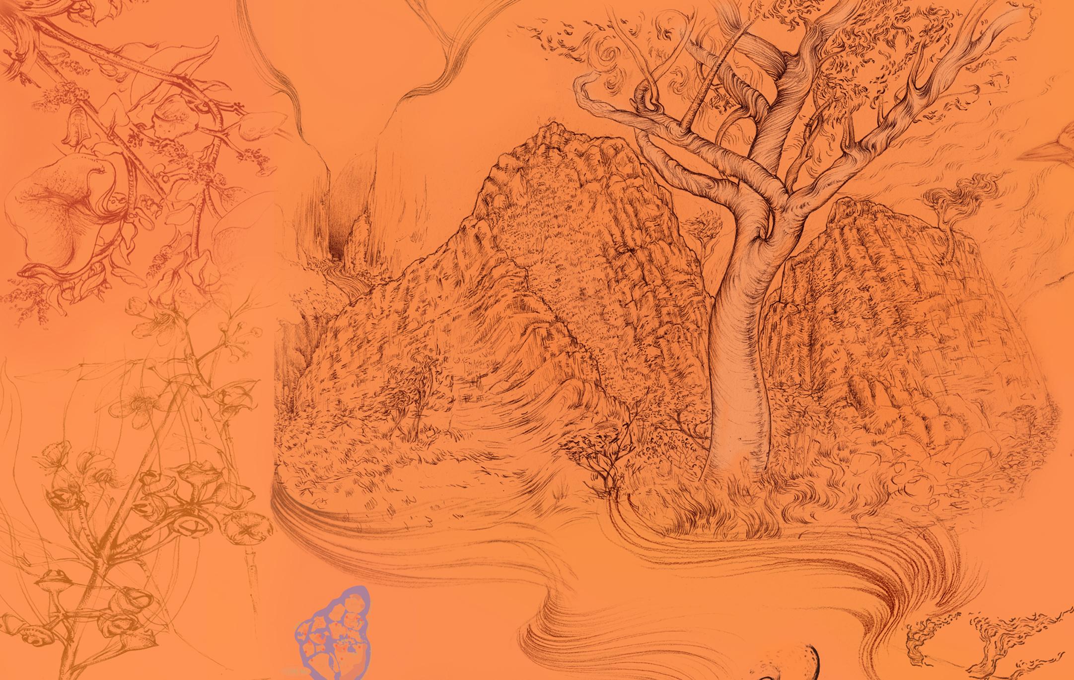 Alice Springs Desert Park 02