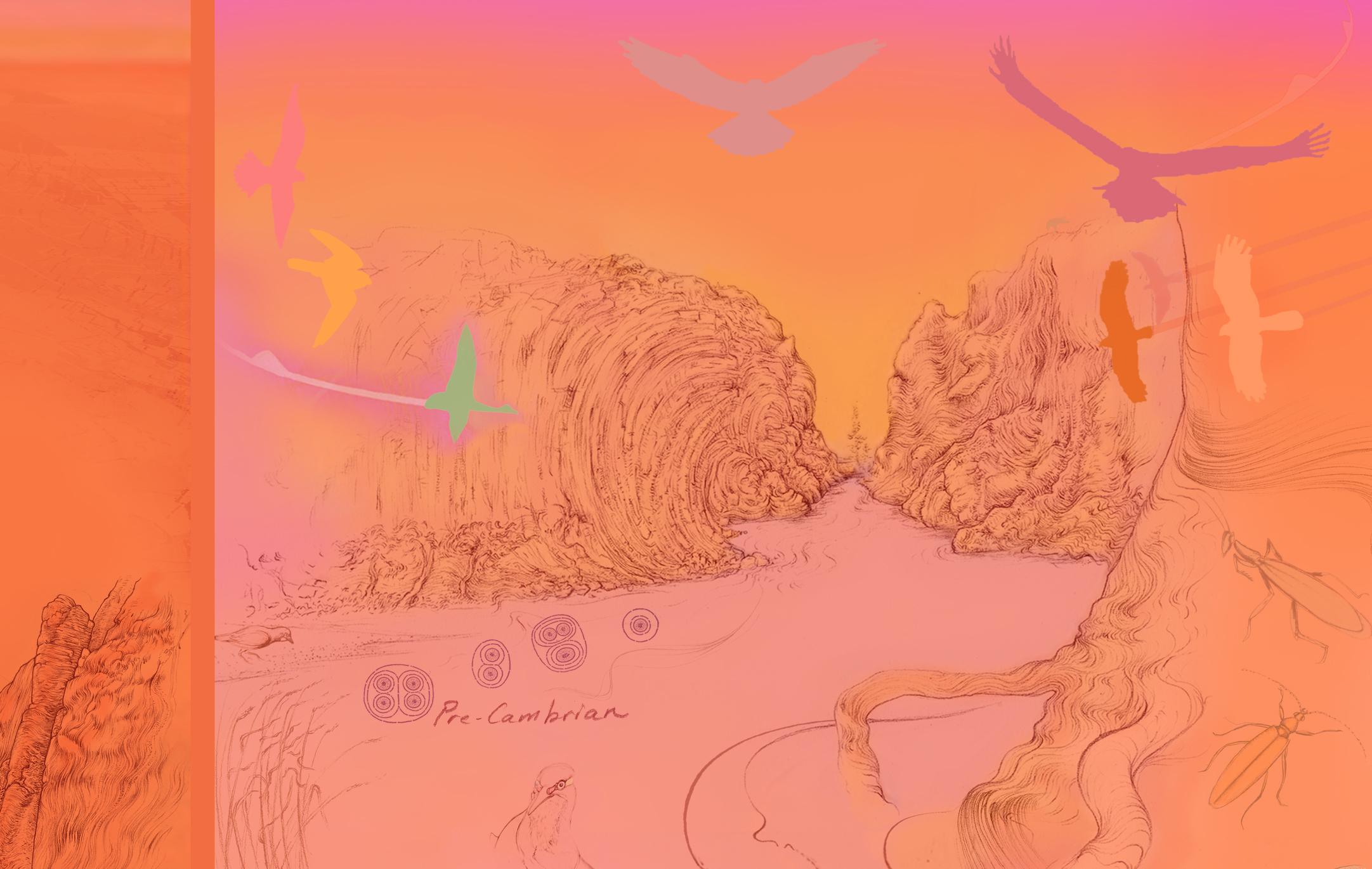 Alice Springs Desert Park 05