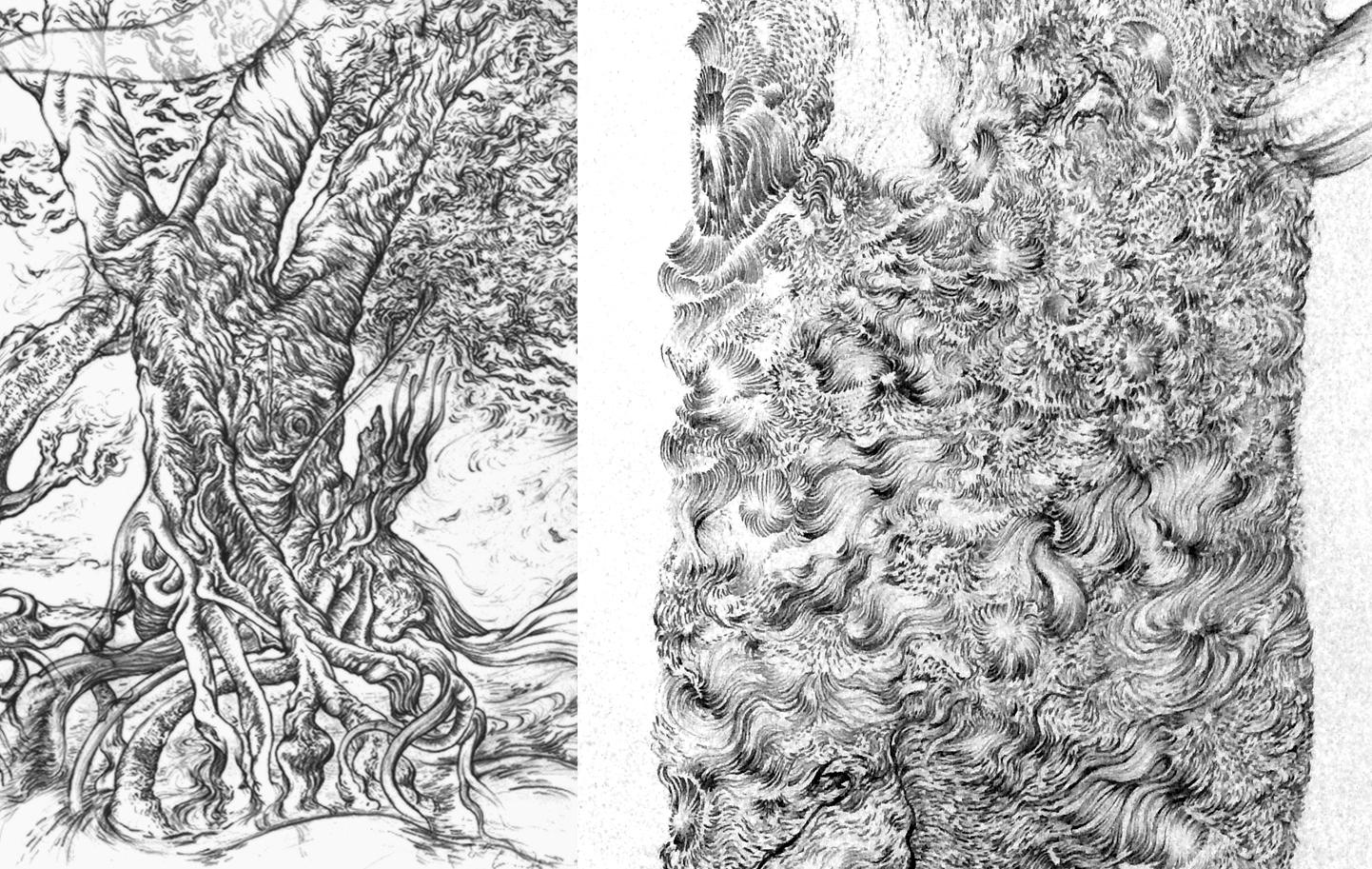 Kimberley Drawings 01