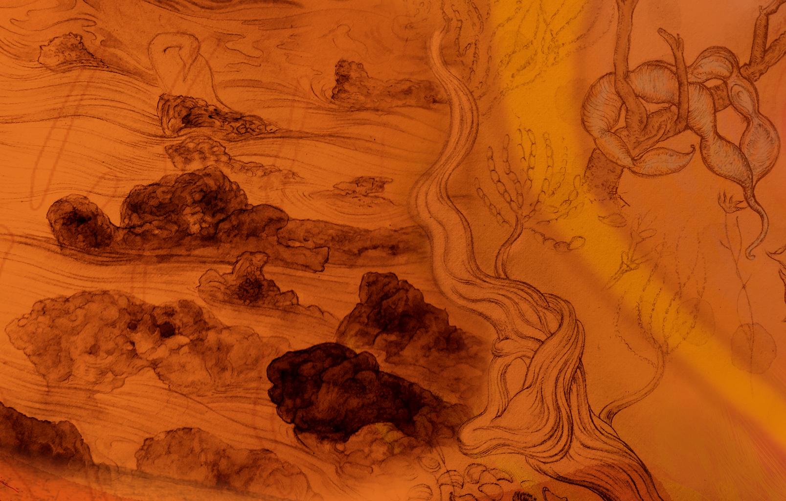 Hamelin Pool to Mount Augustus detail 3