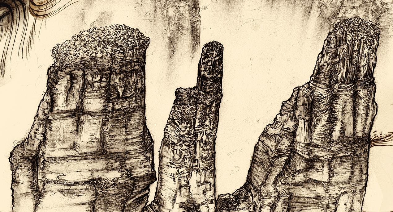 Carnarvon Gorge detail 02