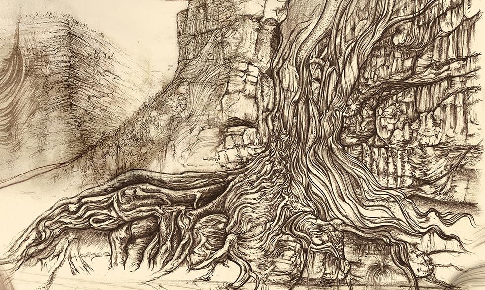 Carnarvon Gorge detail 04