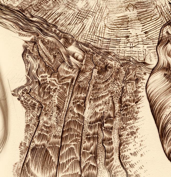 Carnarvon Gorge detail 07