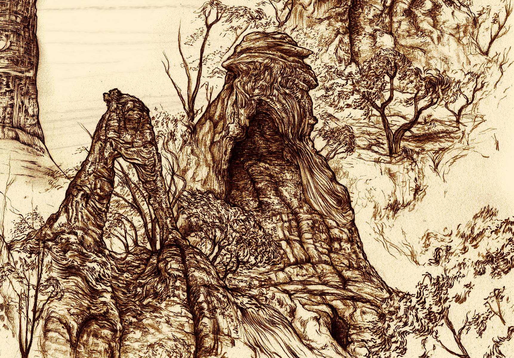 Carnarvon Gorge detail 10b
