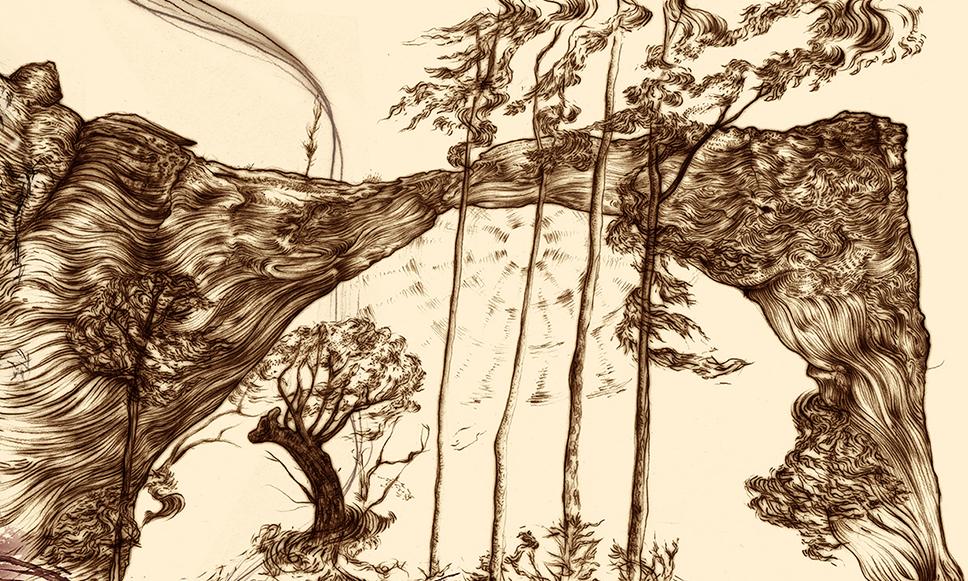 Carnarvon Gorge detail 11A