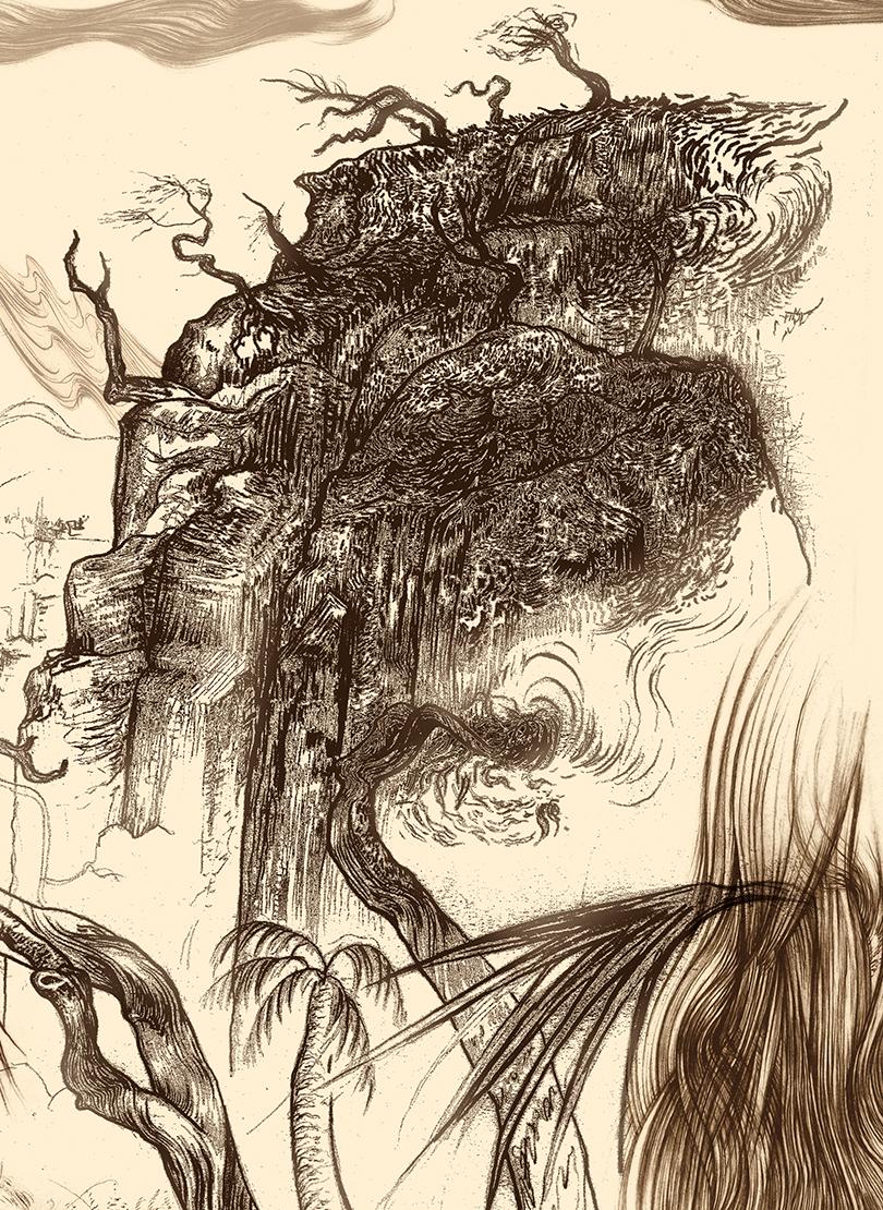 Carnarvon Gorge detail 12