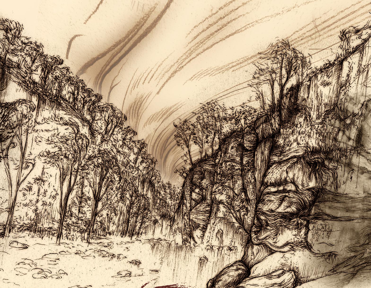 Carnarvon Gorge detail 13B