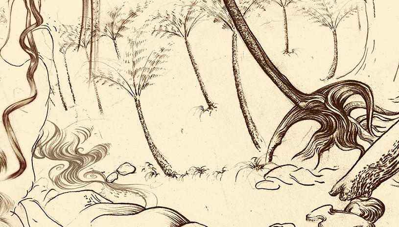 Carnarvon Gorge detail 22