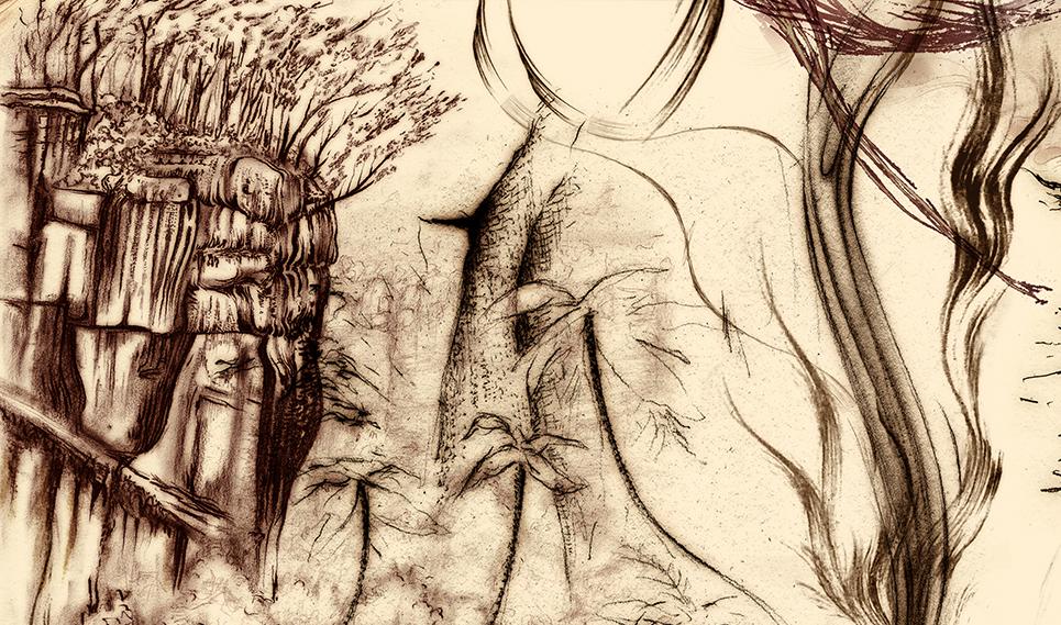 Carnarvon Gorge detail 24