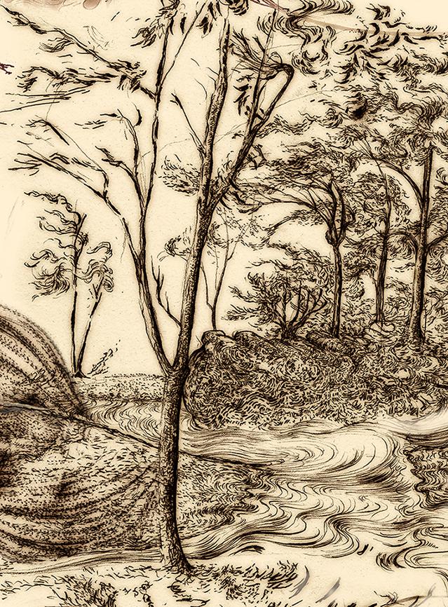 Carnarvon Gorge detail 25