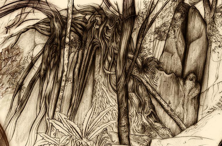 Carnarvon Gorge detail 27
