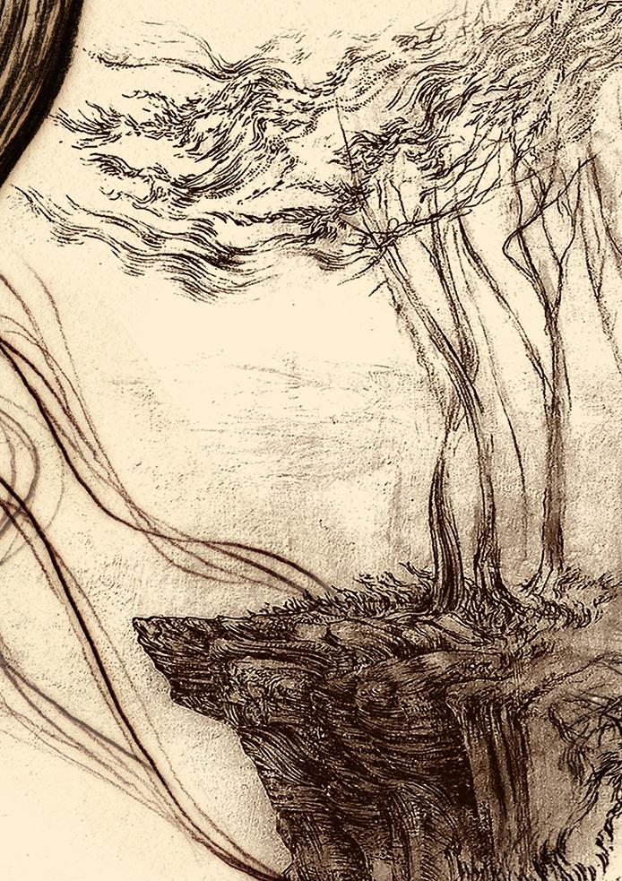 Carnarvon Gorge detail 32 A