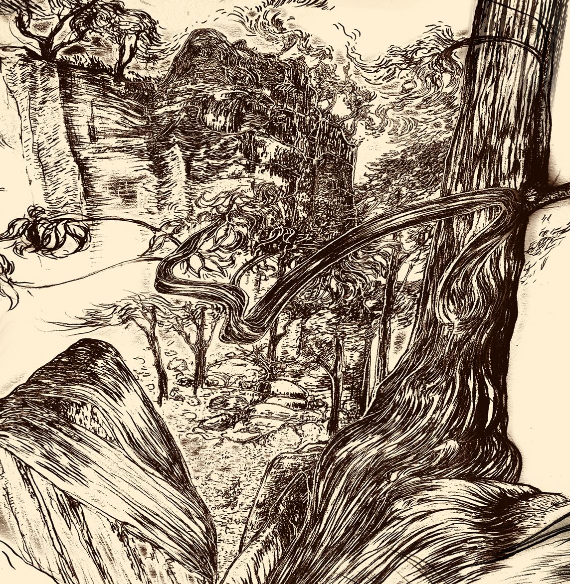 Carnarvon Gorge detail 34B